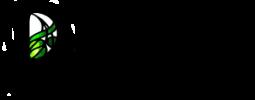 Duille